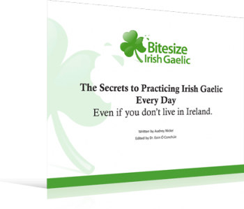 The Secrets to Practicing Irish Gaelic Every Every