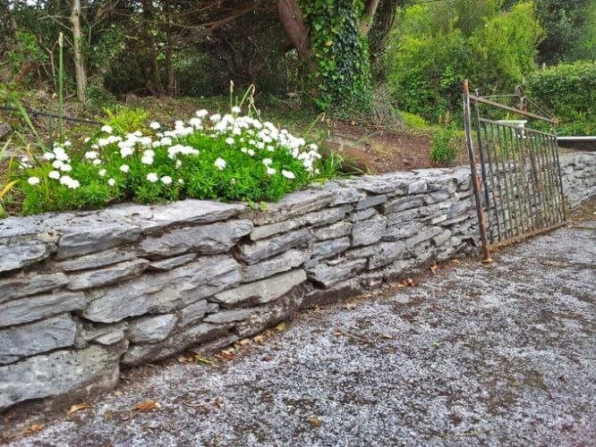 img_0021-kerry-ireland