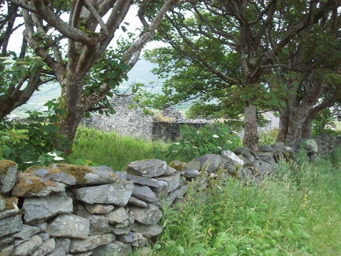 Picturesque ruin along the hostel road in Glencolmcille. 2013, by Audrey Nickel